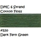 DMC 6 Strnd Cotton Embroidery Floss Dk Fern Green 520