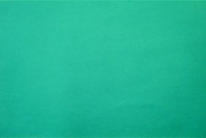 Teal Green Quilt Fabric