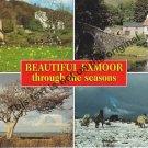 Exmore England - Mauritron Postcard #345