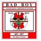 eBook (PDF) BADBOY Volleyball Play Book