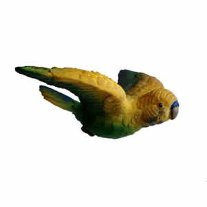 Window Fly Thru - Yellow Parakeet