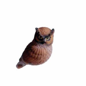 Window Fly Thru - Screech/Barn Owl