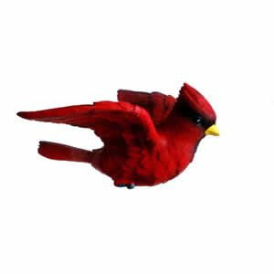Window Fly Thru - Cardinal