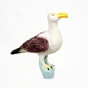 Window Fly Thru - Seagull