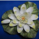 Older.......Porcelain Figurine of WATER LILY