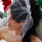 """Dramatically Long Bird Cage Veil (15"""" long x 16"""" wide on Comb) V Cage 900"""