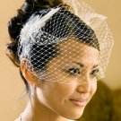 Bridal Feather Accent with Russian Style Cage Veil HP 1027 (White or Ivory)