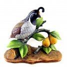 Andrea By Sadek Partridge In A Pear Tree 1991 Bird Figurine 4 3/4 Inches Number 8771