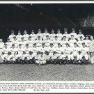 1950 PHILADELPHIA PHILLIES *WIZ KIDS* TEAM-  11x14 SIZE