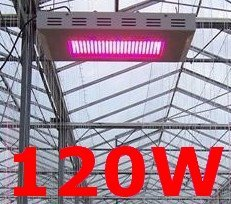 New High Power 120W LED Grow Light (CE&roHS)  For Growth & Bloom
