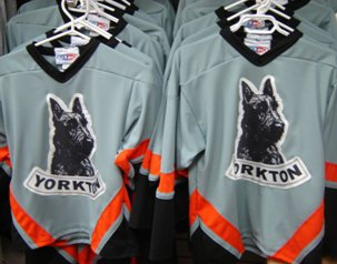 Youth Terrier Jersey