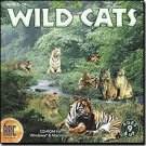 World Of Wild Cats Education Interactive CD Ages 9+ - Vista - 35383