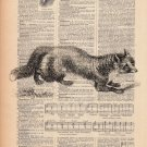 Fox Vintage French Book Page Art Print