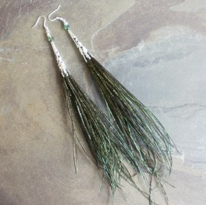 Sale! Natural Peacock Feather Earrings