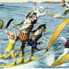 Mainzer - Cats Water Skiing - Postcard