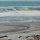 Gold Beach, State Park, Calif  (A18)