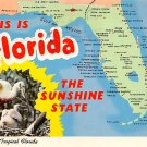 Florida Greetings - Map Postcard (A389)