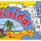 Florida The Sunshine State - Map Postcard (A418)