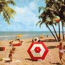 Miami Beach, Florida 1959 Postcard (A441)