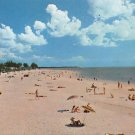 Clearwater Beach, Florida Postcard (A446)
