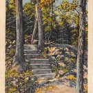West Rock, Conn, CT Postcard - Footpath 1948 - (A600)