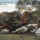 Bridgeport, Conn, CT Postcard - Beardsley Park 1916 (A604)
