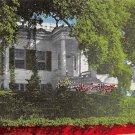 Natchez, Miss, MS Postcard - Green Leaves 1950 (A673)