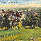 Shenandoah, PA Postcard Aerial View (A710) Penna, Pennsylvania