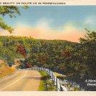 Scenic Route 219, PA Postcard (A719) Penna, Pennsylvania