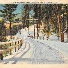 Pocono Mts, PA Postcard Lackawanna Trail Winter Scene (A778) Penna, Pennsylvania