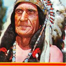 Pocatello, Idaho - Indian Chief - Continental Postcard (B357)