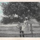 Under the Old Apple Tree- Romance Postcard (B421)