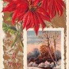 A Merry Christmas Poinsettias - Embossed -J. Winsch (B540-541)