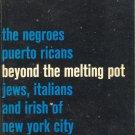 Beyond the Melting Pot by Nathan Glazer and Daniel Patrick Moynihan ~ Book 1965