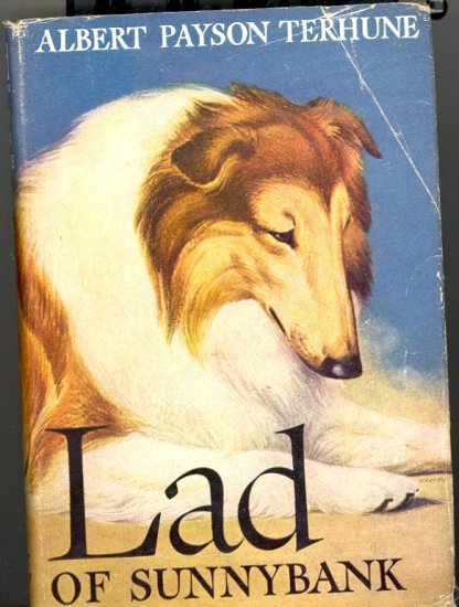 Lad of Sunnybank by Albert Payson Terhune ~ Book 1929