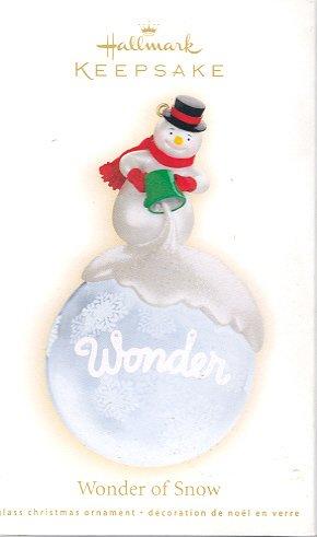 Hallmark Ornament ~ Wonder of Snow 2009