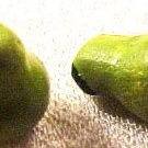 Fruit Pear Green 4 Pottery Beads