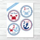 Nautical Crab Monthly Milestone DIY You Print PDF Stickers & Iron On Transfers #A182