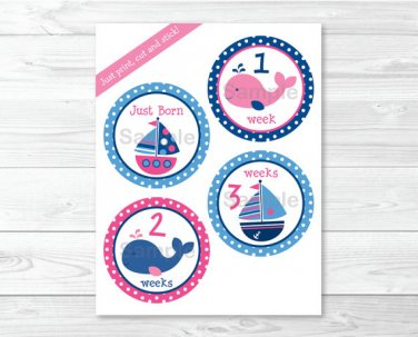 Pink Whale & Sailboat Monthly Milestone DIY You Print PDF Stickers & Iron On Transfers #A254