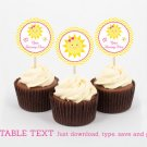 You Are My Sunshine Birthday Cupcake Toppers Party Favor Tags Editable PDF #A261