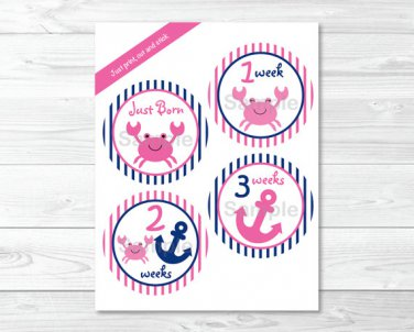 Pink Crab Nautical Monthly Milestone DIY You Print PDF Stickers & Iron On Transfers #A121