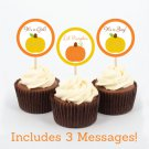 Pumpkin Chevron Gender Neutral Cupcake Toppers Party Favor Tags Printable #A400
