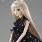 J-Doll X-120 in-sa-Dong Collectible Fashion Doll