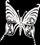 """(BTR 6) 6"""" white vinyl Butterfly die cut window laptop decal sticker."""