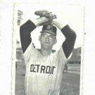 1969 Topps Deckle Edge Denny McLain Detroit Tigers Baseball Card