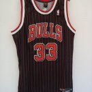 Scottie Pippen Alternate Jersey
