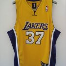 Ron Artest Home Jersey