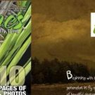 Hatches Practical & Artistic Fly Tying Fall Magazine