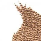 NEW America's Best Natural Grey Grizzly Dry Fly Hackle Feathers