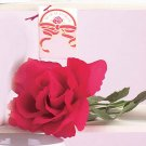 Musical Rose 1ct